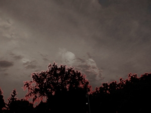 Halloween Sky - Liz  Bennefeld photo